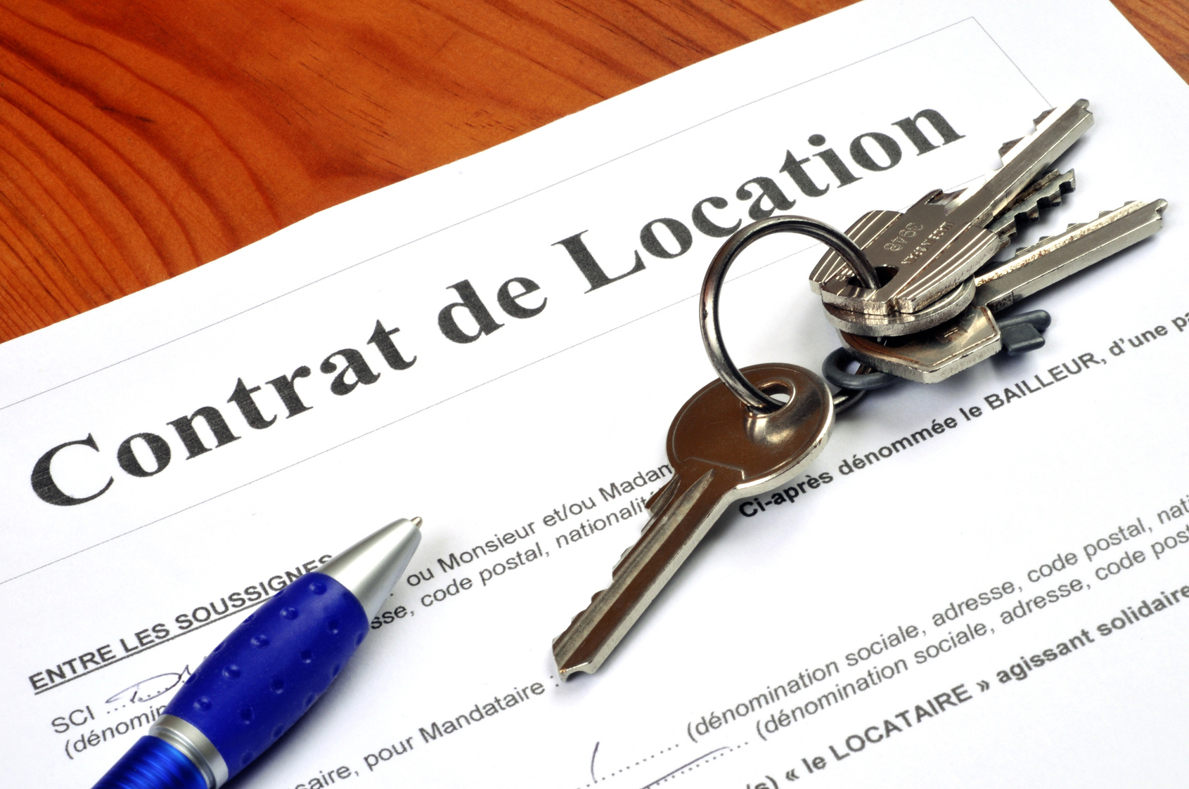 Location le contrat de bail